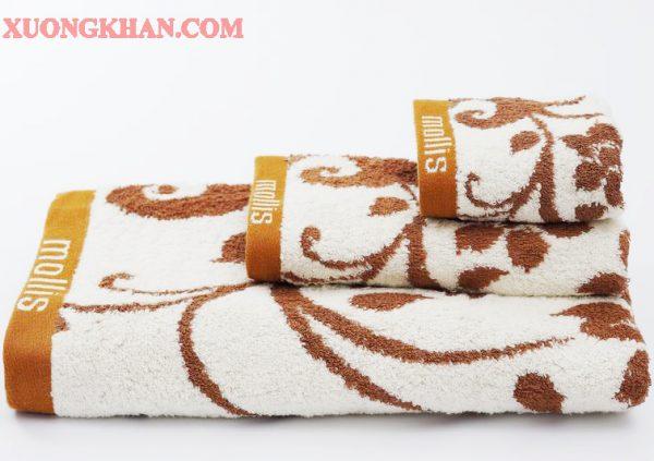 Dòng Khăn bông cotton Mollis Phong phú