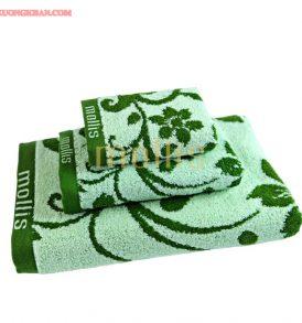 Nhà cung cấp khăn bông mollis