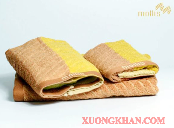 Xưởng sản xuất khăn Mollis